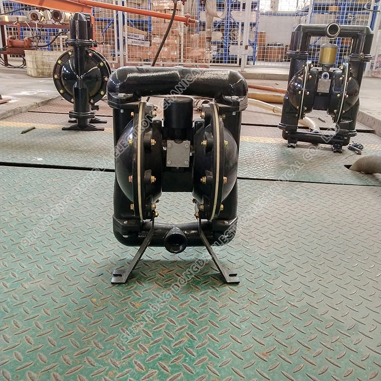 Bqg150/0.2 Pneumatic diaphragm pump